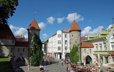 Viru Valjak Image