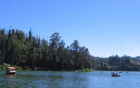 Ooty Lake Image