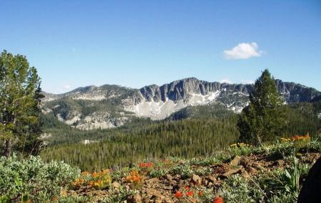 Boise National Forest Image