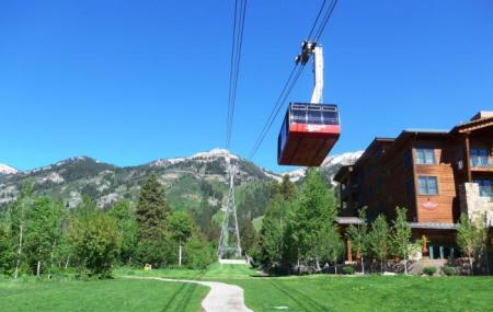 Jackson Hole Aerial Tram Image