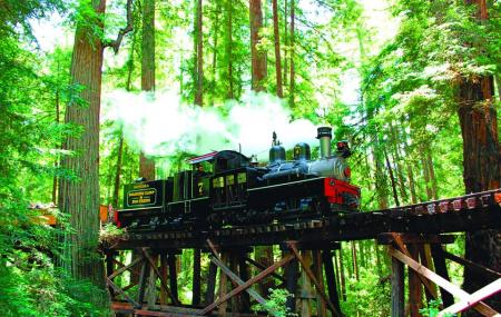 Roaring Camp Railroads Image