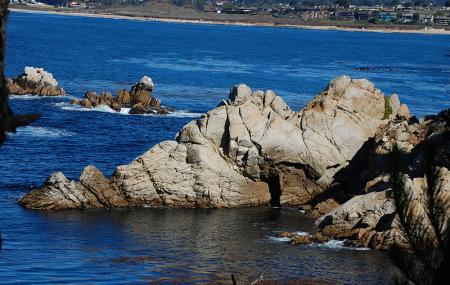 Point Lobos State Reserve And China Cove Gibson Beach Image