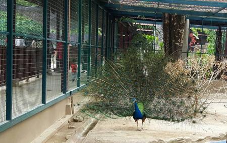 Langkawi Wildlife Park Image