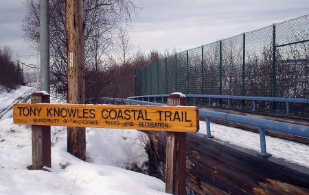 Tony Knowles Coastal Trail Image
