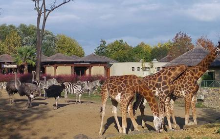 Bursa Hayvanat Bahcesi Image