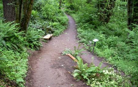 Forest Park Image