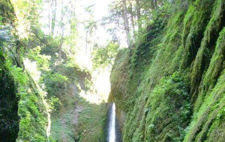 Oneonta Gorge Image