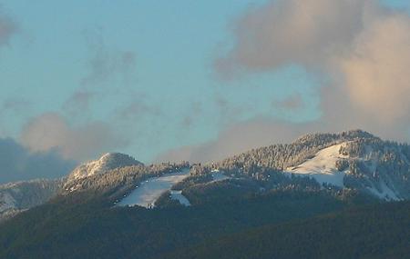 Grouse Mountain Image