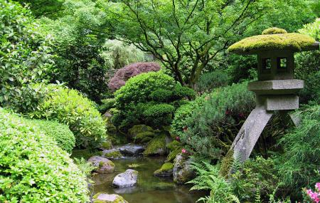 Portland Japanese Garden Image