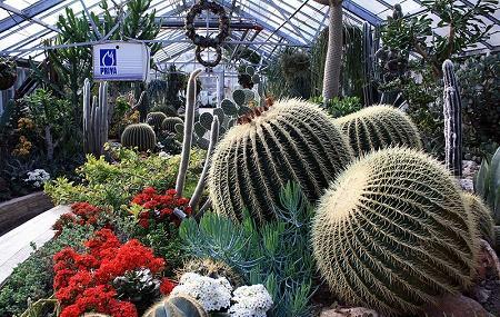 Allan Gardens Image