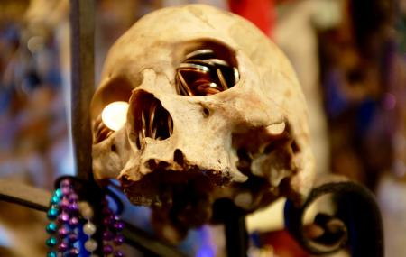 New Orleans Historic Voodoo Museum Image