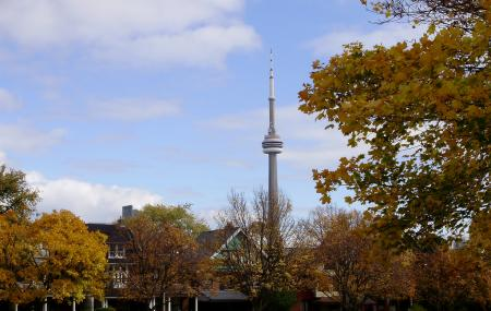 Trinity Bellwoods Park Image