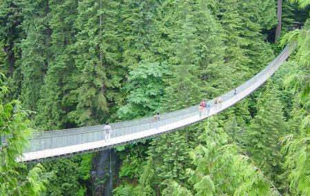 Capilano Suspension Bridge Image