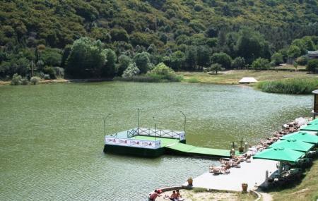 Turtle Lake Image