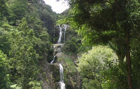 Kitekite Falls Image