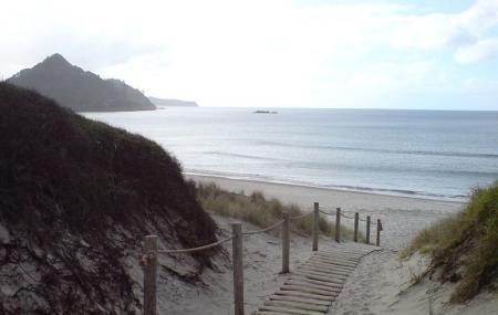 Medlands Beach Image