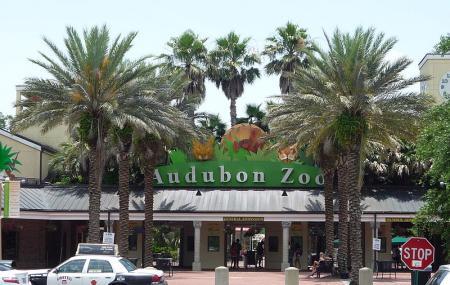 Audubon Zoo Image