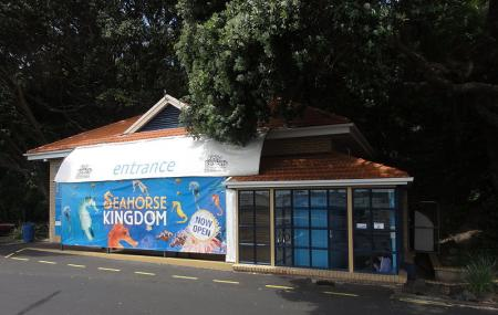 Kelly Tarlton's Sea Life Aquarium Image