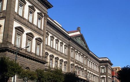 Naples University Image