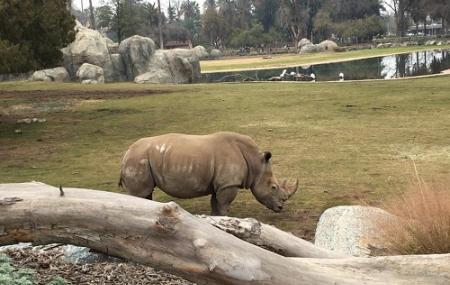 Fresno Chaffee Zoo Image