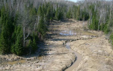 Fort Creek Conservation Area Image