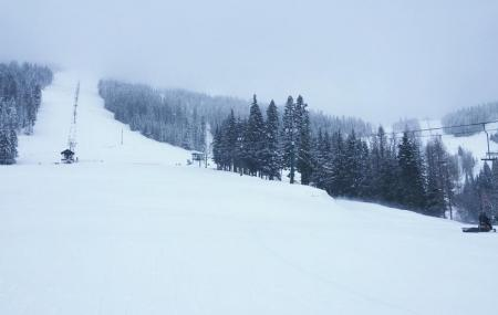 Mount Spokane Ski And Snowboard Park Image
