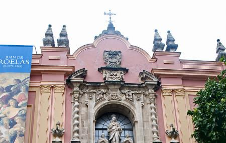 Museo De Bellas Artes Image