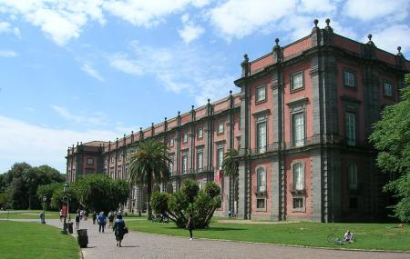 The Capodimonte Museum And Park Image
