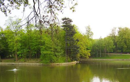 Bois De La Cambre And Foret De Soignes Image