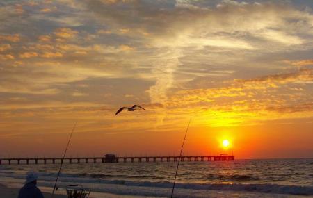 Gulf State Park Fishing Pier Image