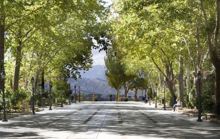 Alameda Del Tajo Image