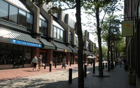 Essex Street Pedestrian Mall Image
