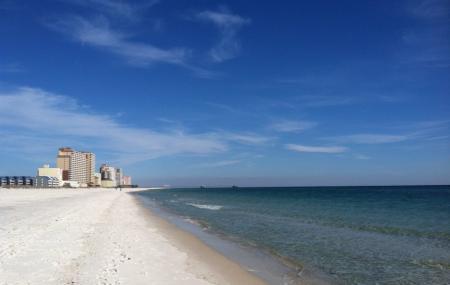 Gulf Shores Public Beach Image
