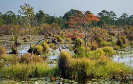 Bon Secour National Wildlife Refuge Image