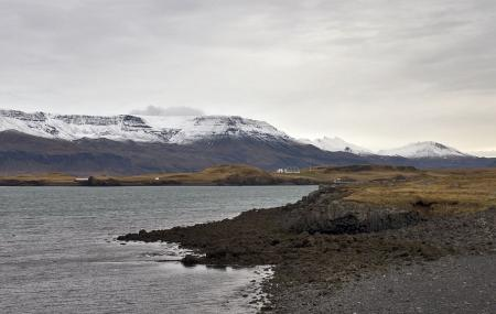 Videy Island Image