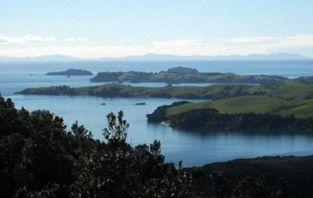 Motutapu Island Image