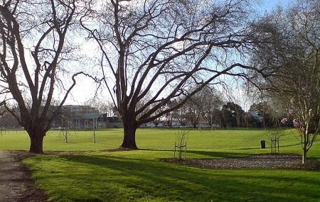 Victoria Park Image