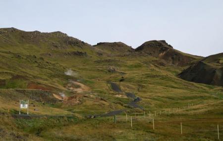 Reykjadalur Hot Springs Image