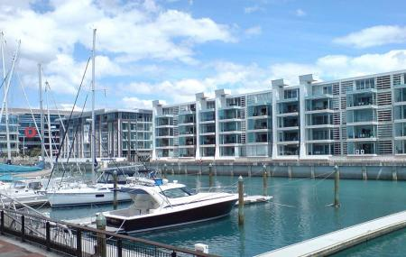 Viaduct Harbour Image