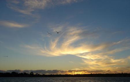 Hauraki Gulf Image