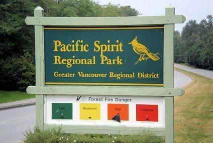 Pacific Spirit Regional Park Image