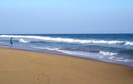 Konark Beach Image