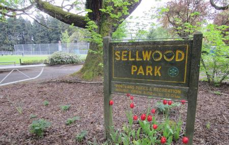 Sellwood Riverfront Park Image