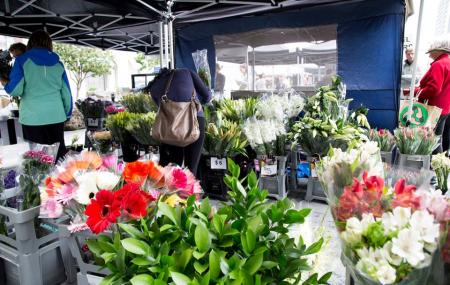 La Cigale French Market Image