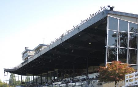 Hastings Park Racecourse Image