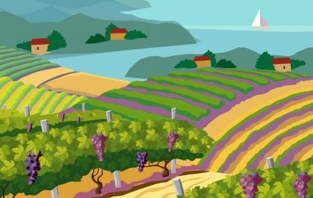 Herman Story Winery Image