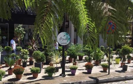 Wakalat Street Image