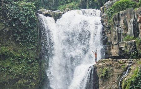 Tegenungan Waterfall Image