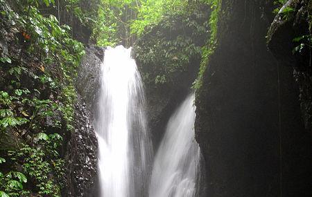 Gitgit Waterfall Image