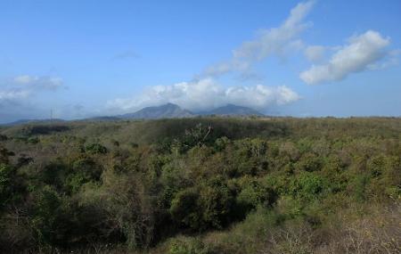 West Bali National Park Image
